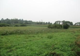działka na sprzedaż - Sicienko, Pawłówek